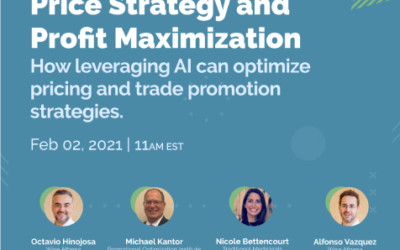 Webinar: Price Strategy and Profit Maximization