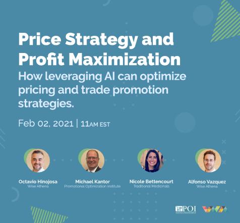 Webinar: Price Strategy and Profit Maximization
